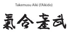 ideogram-aikido